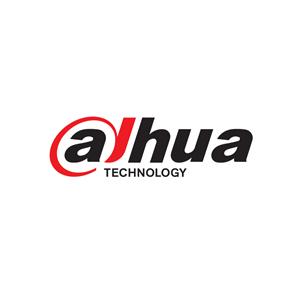Dahua IP camera's